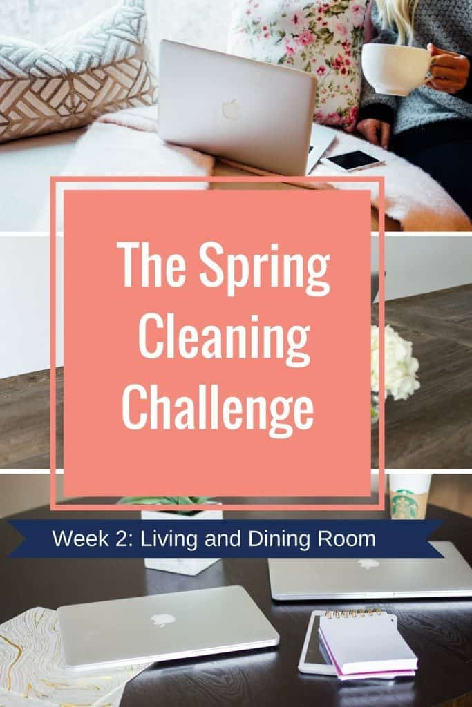 spring cleaning challenge Week 2-Living room (1)