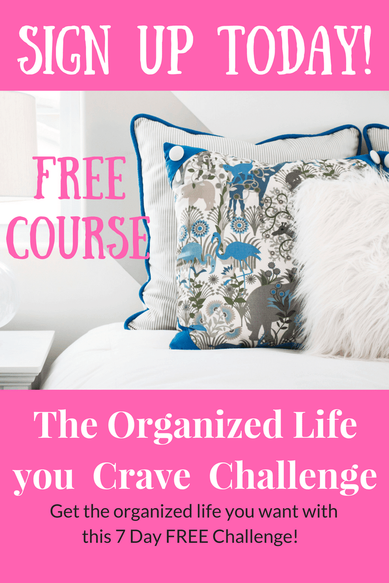 The Organized Life you Crave Challenge